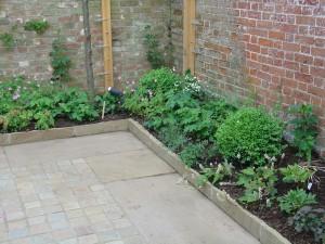 Planting13