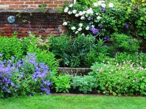 garden_home