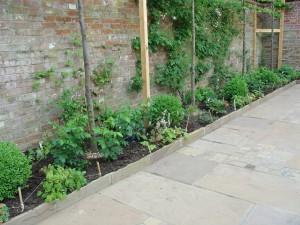 paving_planting